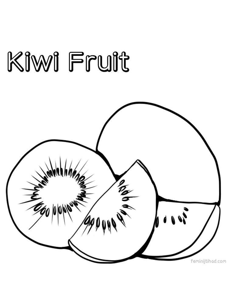 Kiwi Coloring Page Free