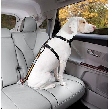Dog Travel Accessories Products Pet Valu Pet Store Pet Food Treats And Supplies Dog Seat Belt Cat Seat Belt Pet Harness