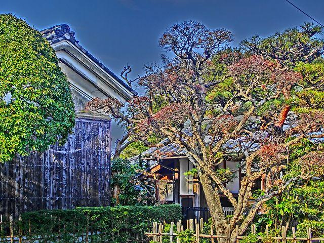 HDR Japanese Garden