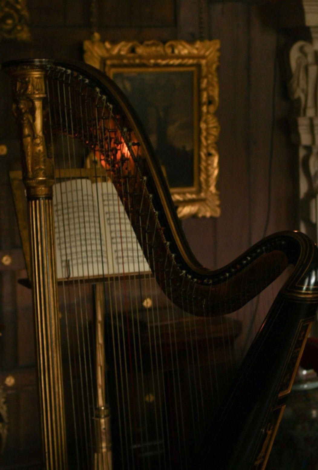 Pin By Dj On Dark Academia Aesthetic Harp Music Love Music Art