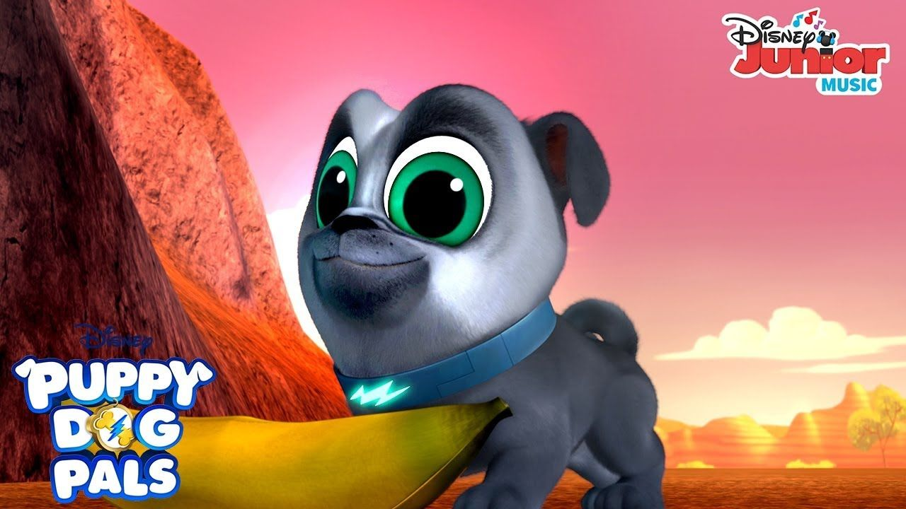 Looking For A Boomerang Music Video Puppy Dog Pals Disney Junior