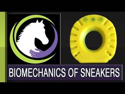 (19) Breaking the Cycle of Hoof Lameness Navicular