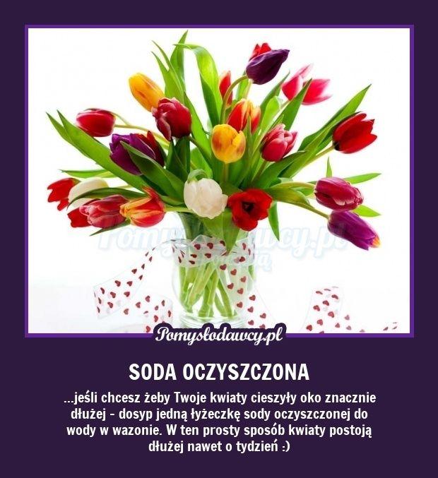 Pomyslodawcy Pl Serwis Bardziej Kreatywny Simple Life Hacks Tulips Flowers Fun Learning