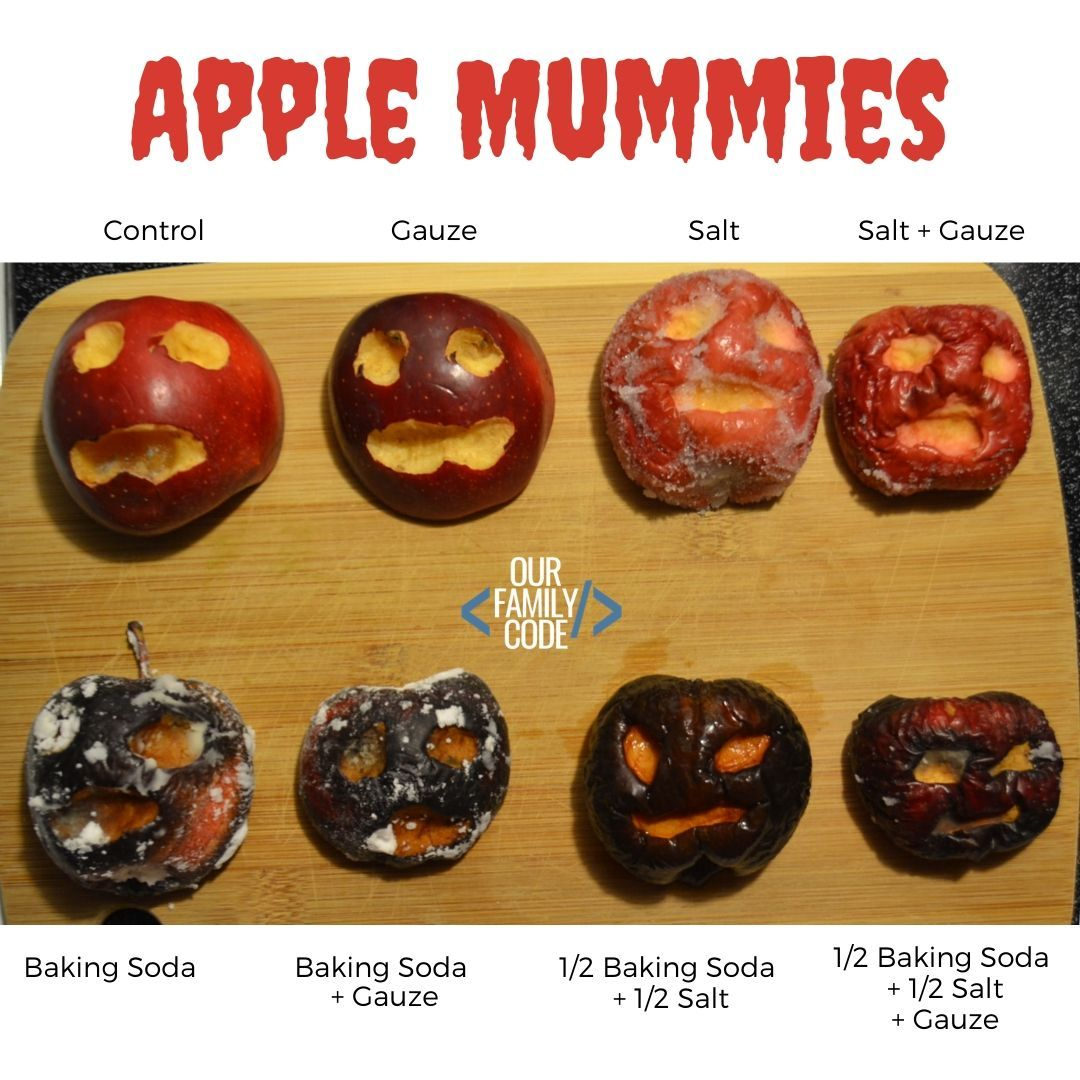 Learn The Science Of Mummification With Apple Mummies