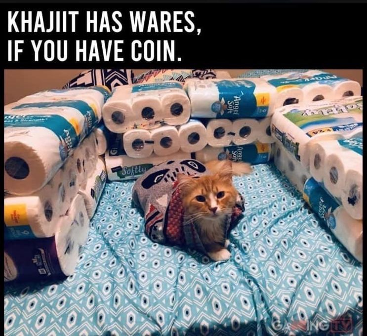 17 Funny Cat Memes About Being Quarantined Funnyfoto Best Cat Memes Cat Memes Funny Cat Memes