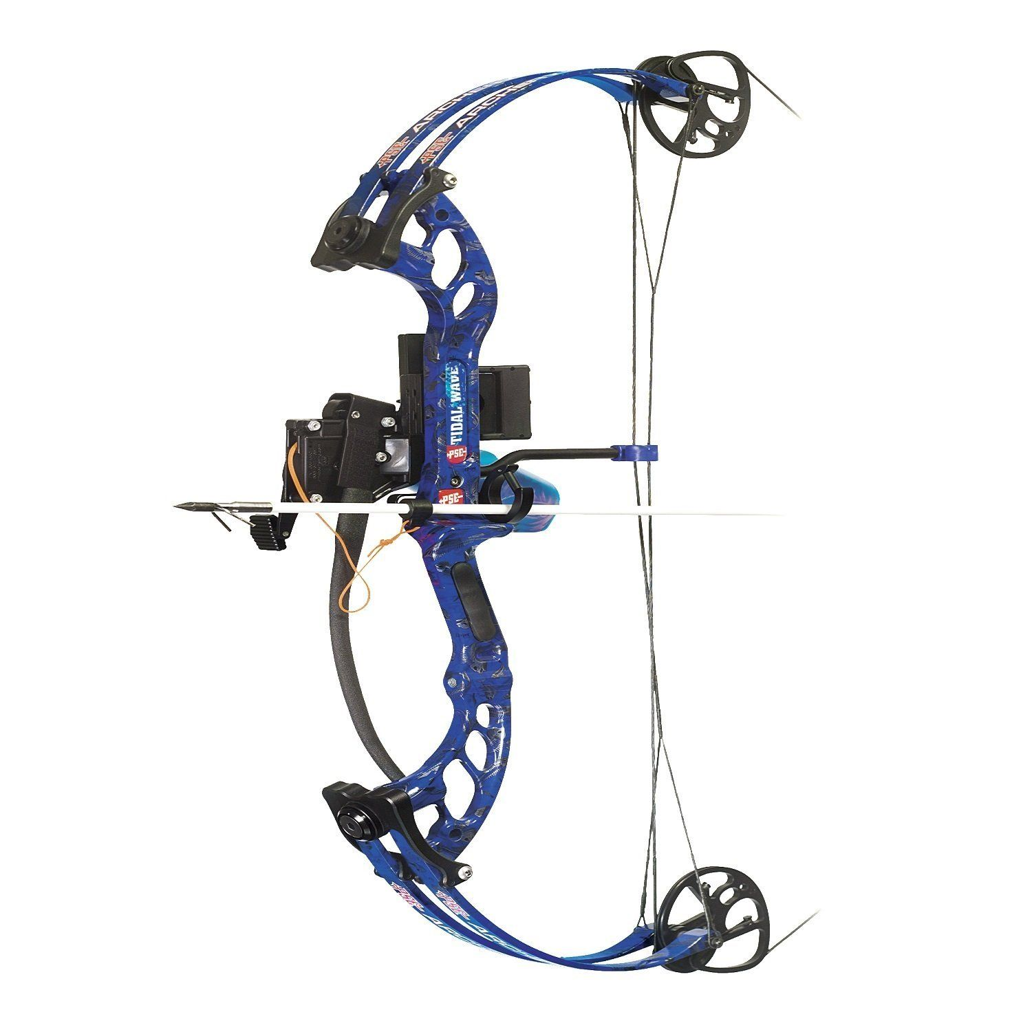 Top 3 bowfishing bows fishing pinterest bowfishing for Compound bow fishing