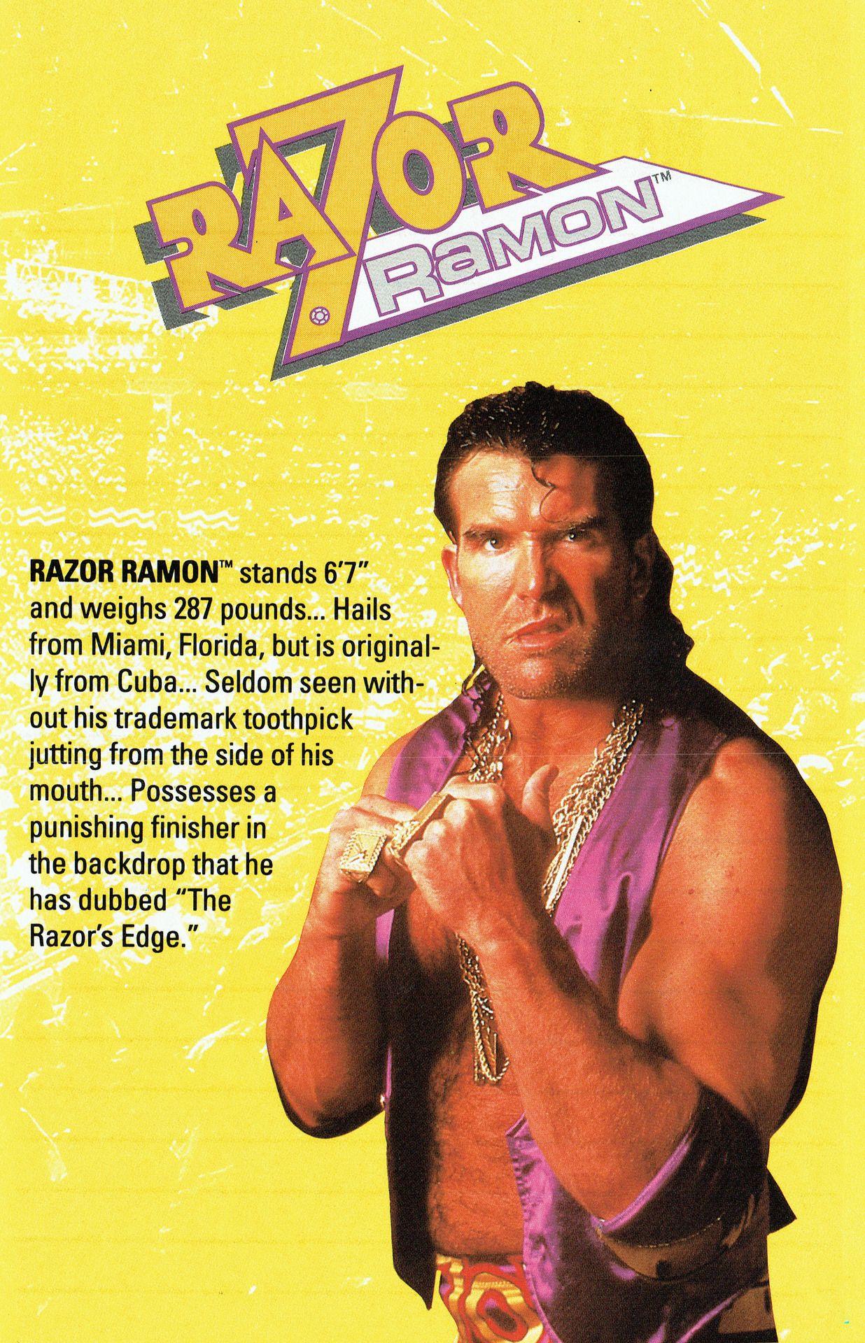 The Profile For Scotthallnwo From Wwf Royal Rumble For The Super Nintendo Wwe Wwf Superstars Wrestling Divas Wrestling Superstars