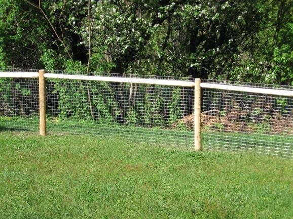 Beautiful Outdoor Fencing For Dogs Cheap Dog Fence Ideas Bing