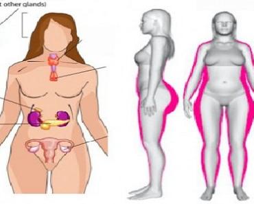 cum să elimini grăsimea din corpul uman