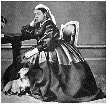 Awesome People Own Dachshund Dogs Queen Victoria Had A Photo