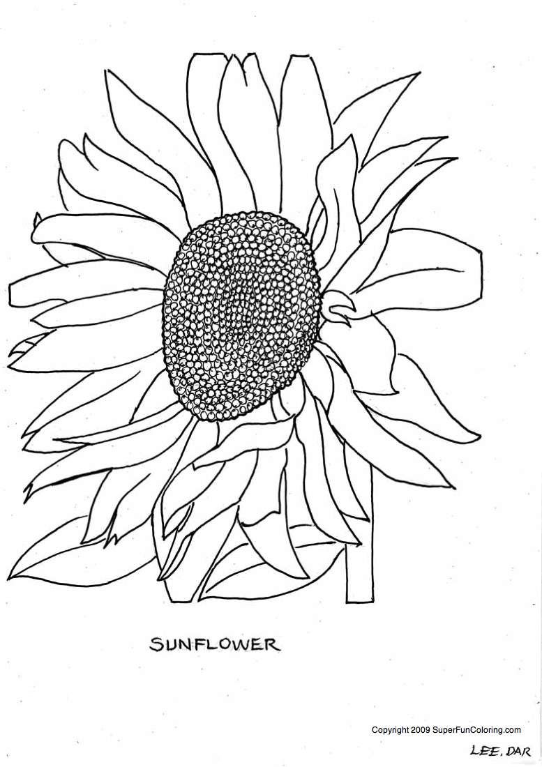 A single flower - Free Printable Coloring Pages- for when they want ...
