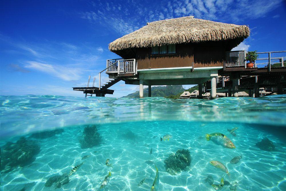 Moorea Overwater Bungalows Resort Spa Bungalow Resorts