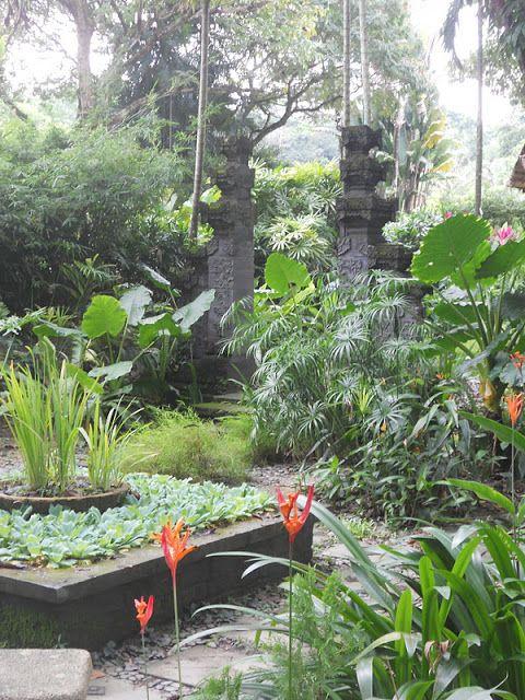 Balinese garden   garden galore   Pinterest   Balinese garden ...