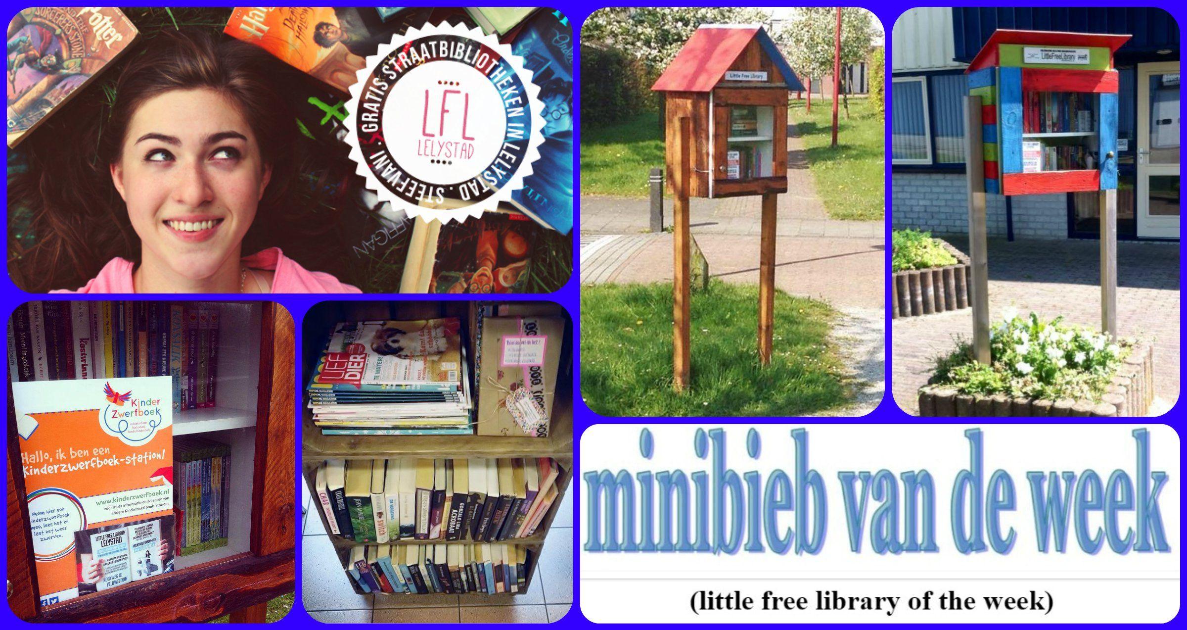"""Little Free Library Lelystad """"MInibieb van de week"""" nummer 35 bij Jet's MInibieb."""