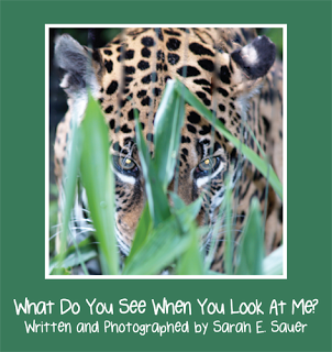 "Childrens Writers World: A Passion for Animals - Author Sarah E. Sauer shares the inspiration behind her new picture book ""What Do You See When You Look At Me?"" http://www.childrenswritersworld.blogspot.com/2013/04/a-passion-for-animals.html"