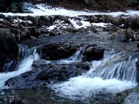 Natural Water Sounds / Babbling Brook / Meditation Nature Sounds