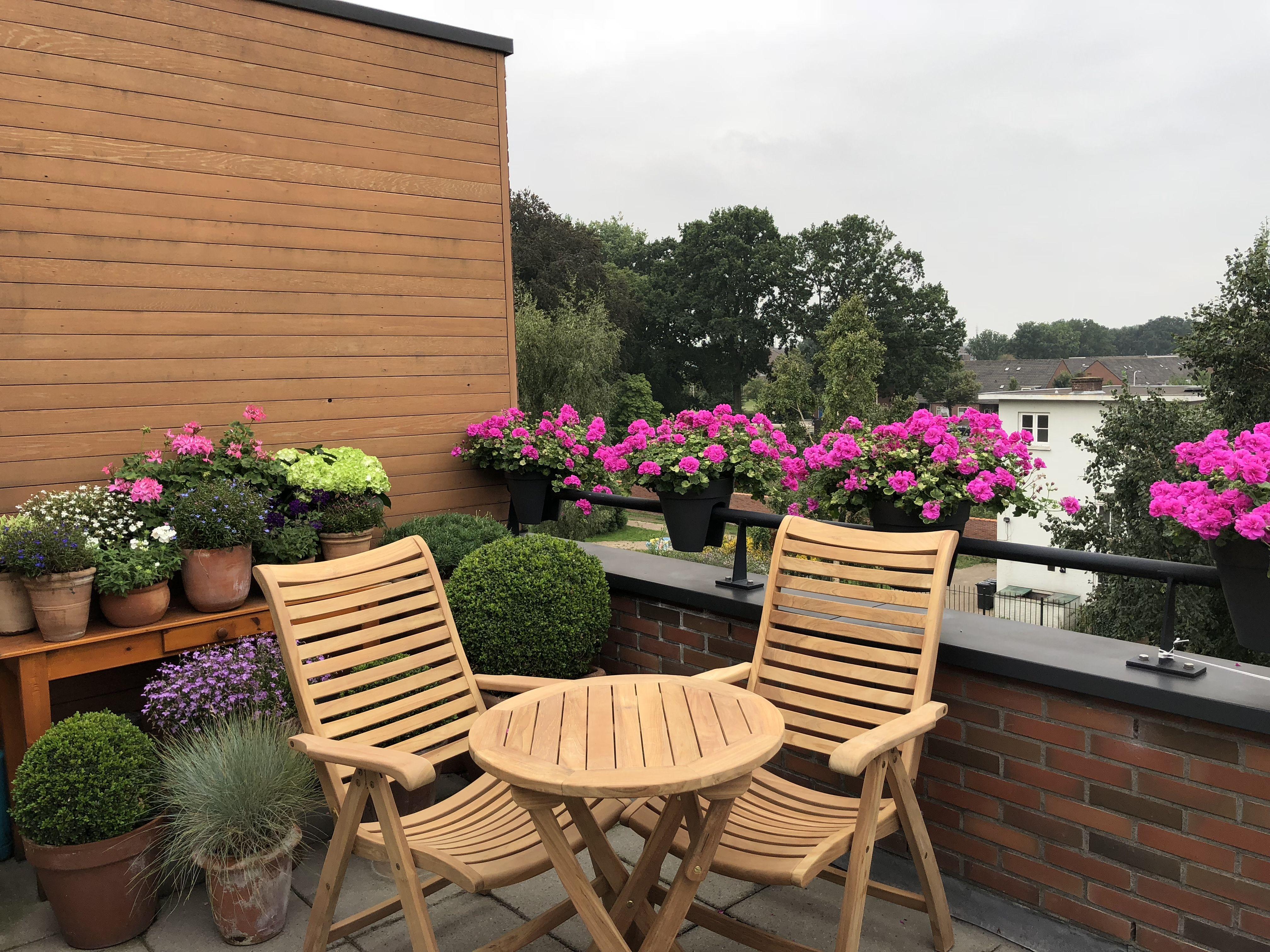 Stoere Houten Tuinstoelen.Sunyard Veronica Standenstoel In 2019 Balkon Ideeen Balkon