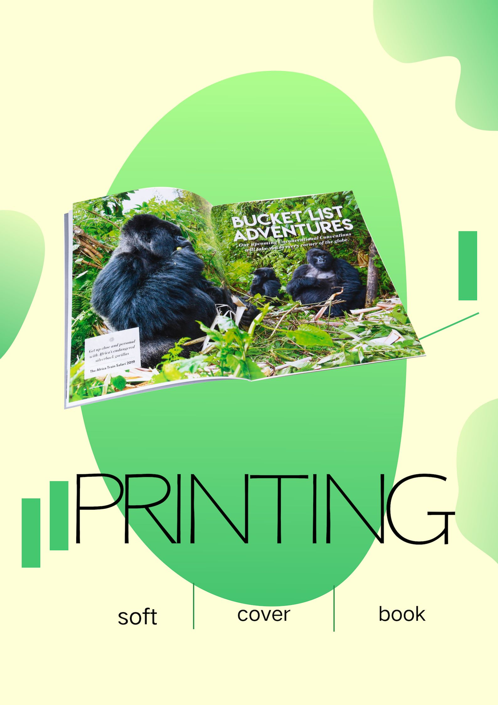 Softcover Book Book Printing Services Book Print Paperback Books