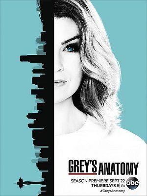 Assistir Greys Anatomy Online Dublado E Legendado Hd 720p Assistir