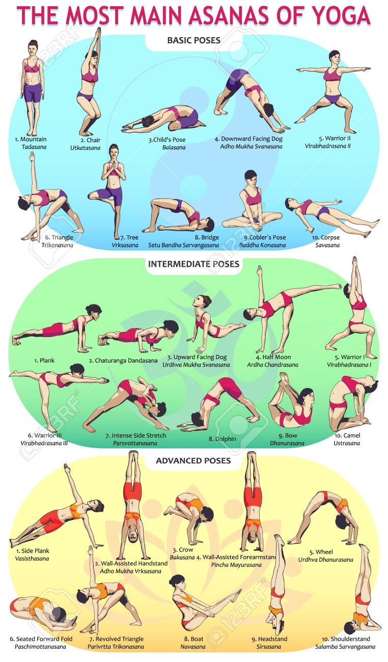 Vector illustration of the 30 most basic yoga postures. Female..
