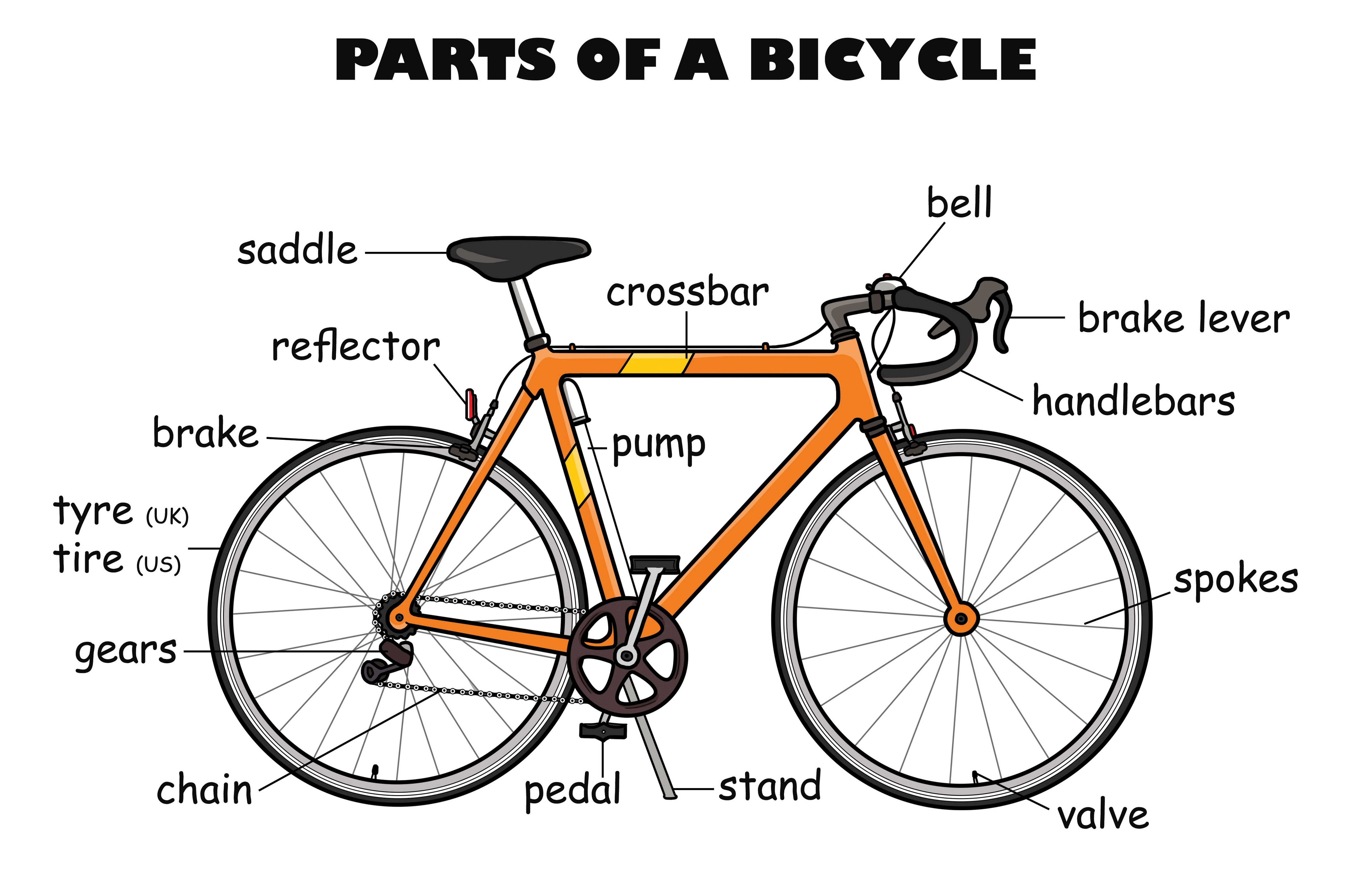 bicycle diagram labeled