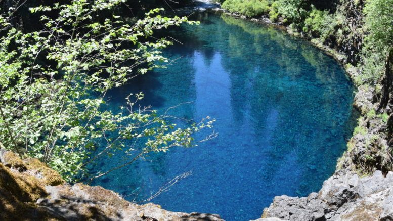 Oregon's Tamolitch Blue Pool hike How to get there