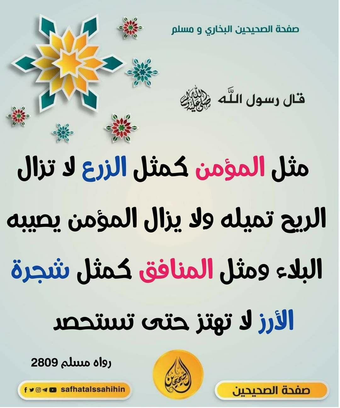 Pin By Maged Egy On الأحاديث النبوية الشريفة Arabic Love Quotes Hadeeth Hadith