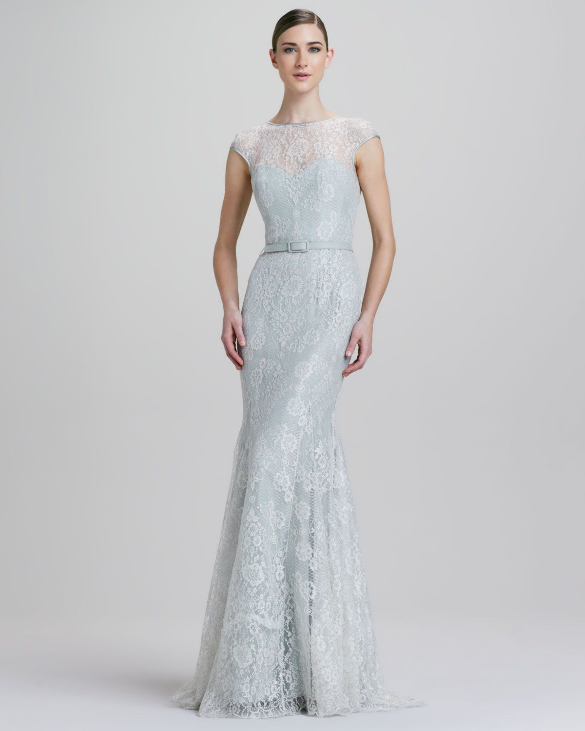 metallic gowns   Theia Fit-and-Flare Metallic Lace Illusion Gown ...