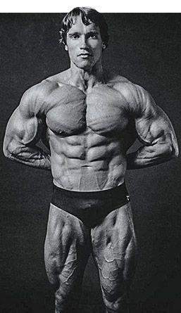 Arnold schwarzenegger blueprint trainer mass training overview malvernweather Gallery