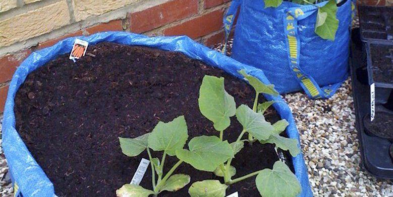Ikea Tas Ah Moestuin Hobby Garden Bags Garden En Ikea