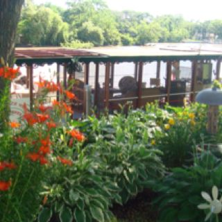 Pin By Jeannie Zenere Cancialosi On Gardening Garden Club Beautiful Yards Garden