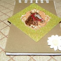 fun little notebook for any horse lover.