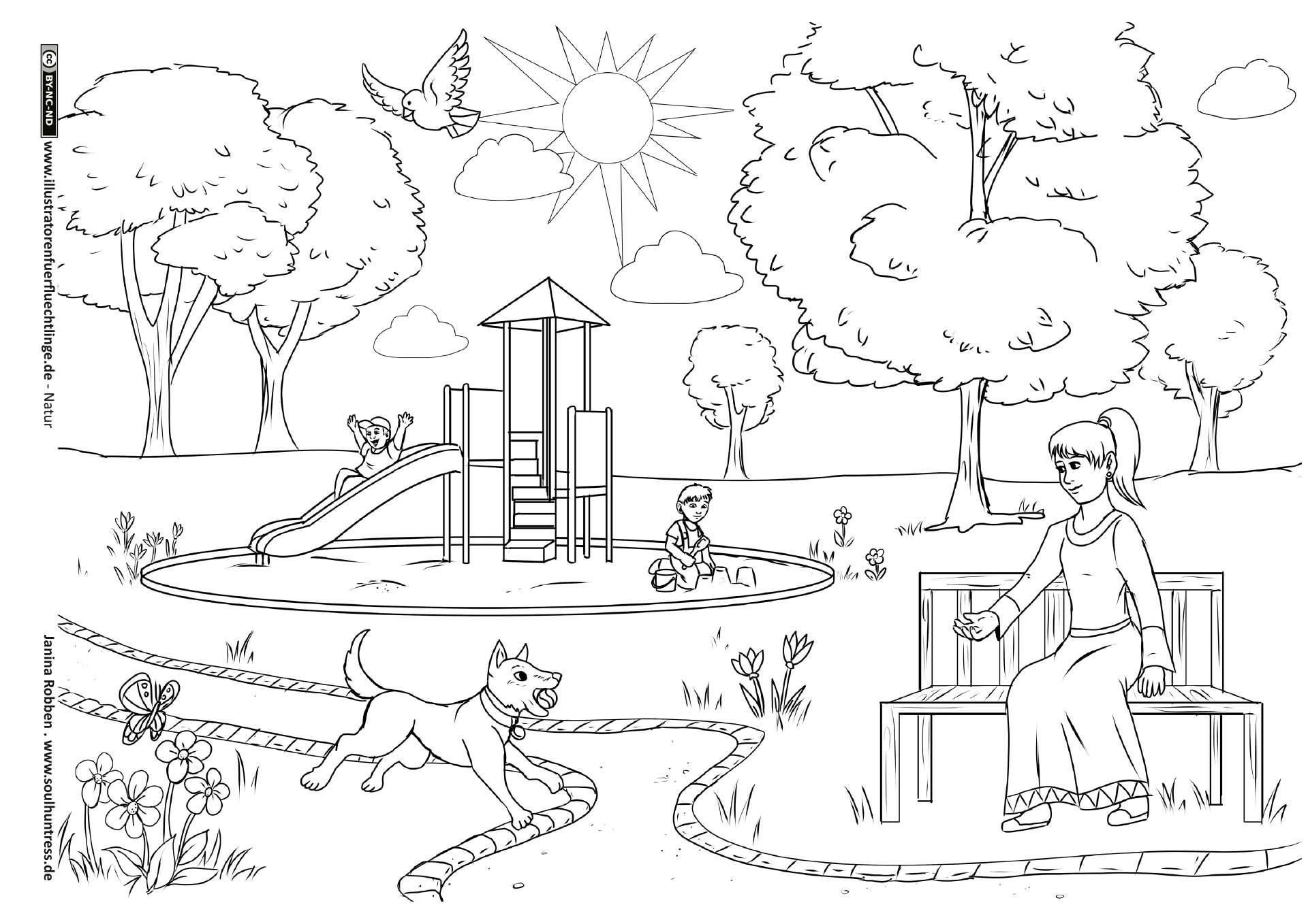 Download als PDF: Natur – Im Park – Robben | Malvorlagen | Pinterest ...