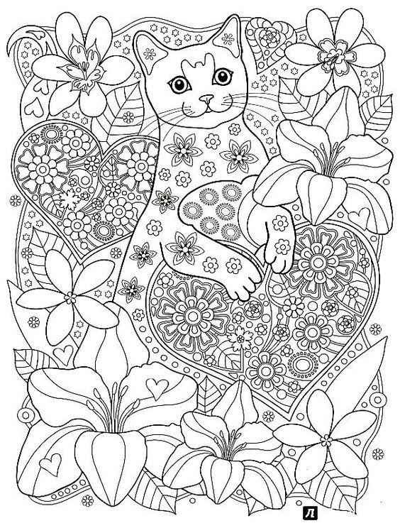 Pin de Sulette Norval en Color pages | Pinterest | Dibujos de gatos ...