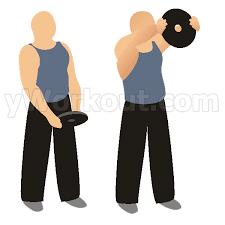 Elevaciones frontales con disco