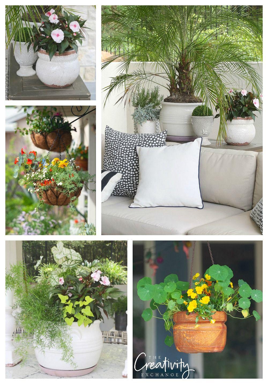 Creative Garden Pot Ideas Flower Pots Creative Garden Pots Container Gardening