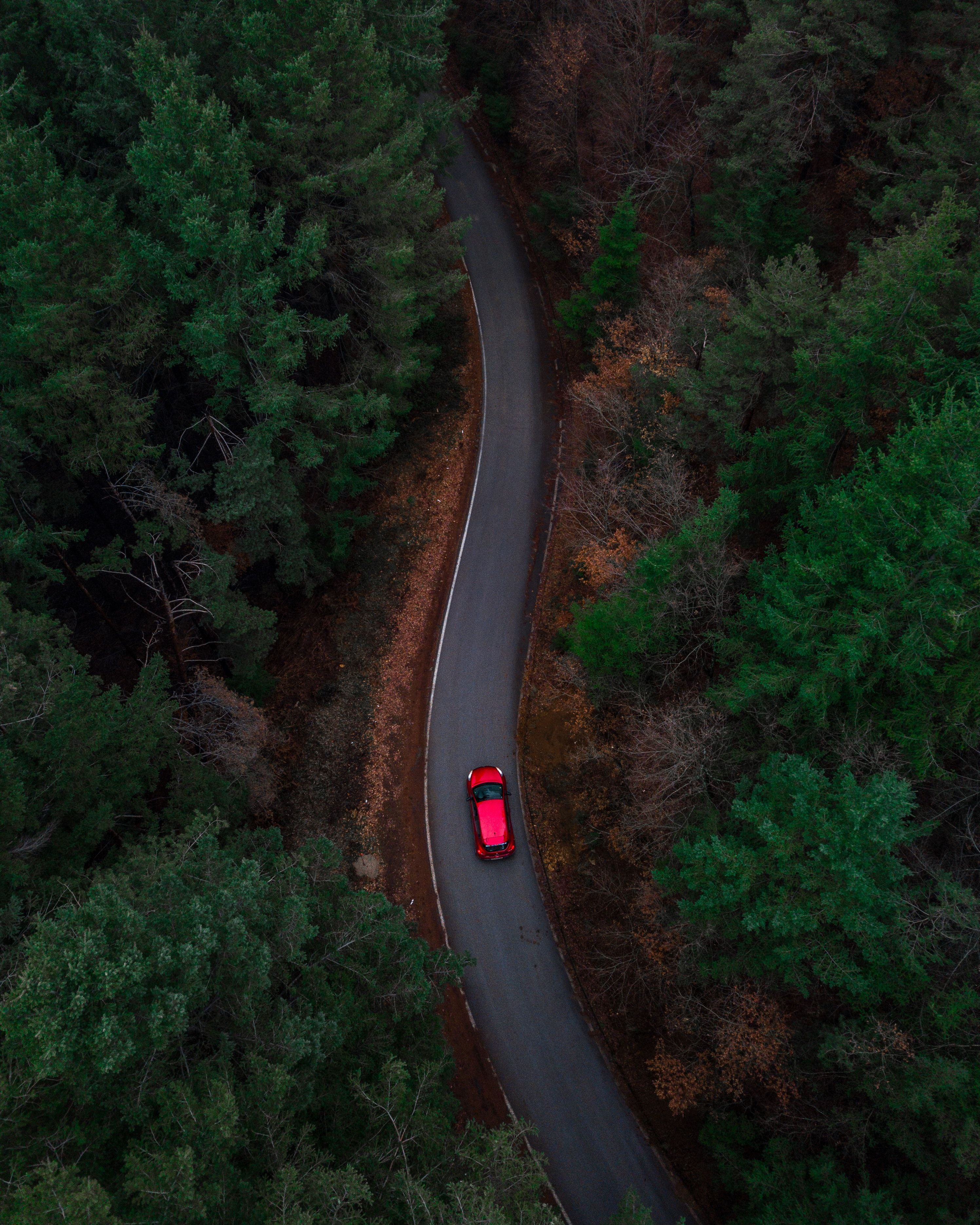 Photo By Christopher Rusev On Unsplash Aerial Photo Forest Photography Aerial View