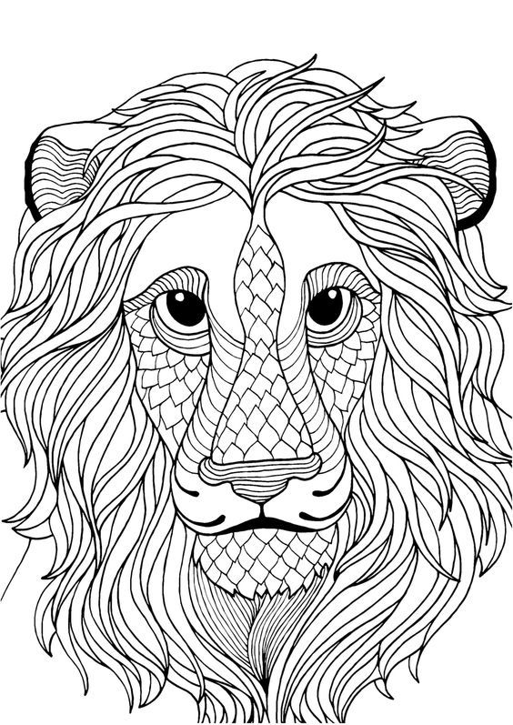 Pin Auf Coloring Lion Tiger