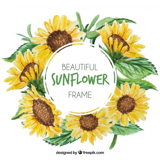 Download Round Floral Frame With Watercolor Sunflowers For Free