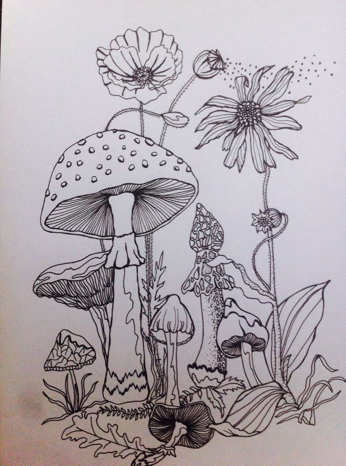 Moon drawing 75 picture ideas illustration blume forrest illustration nature sketch nature