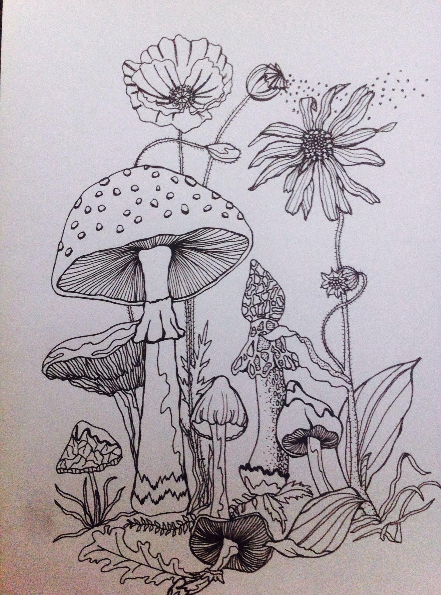 Uncategorized Mushroom Drawing mushrooms limited edition giclee print forrest drawing www jessicalindblombrice com httpfelt co