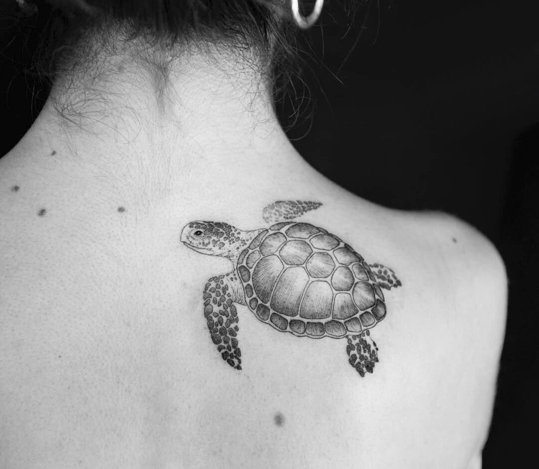 Cute Sea Turtle Tattoo Meaning Idea Art Drawing Awesome Inspiration Ocean Sea Underwater Photography In 2020 Turtle Tattoo Designs Turtle Tattoo Sea Turtle Tattoo