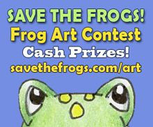 Contest open to artists of all ages and skill levels, and prizes will be awarded in 4 age categories.