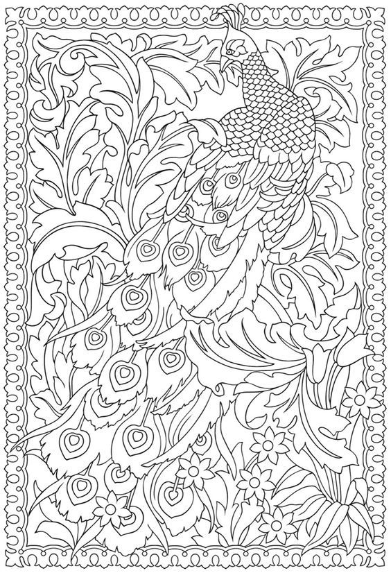 From Creative Haven Peacock Designs Coloring Book