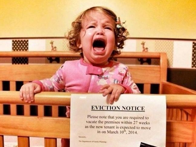 Baby Eviction Notice Baby Pinterest Babies, Pregnancy and Crib - eviction notice