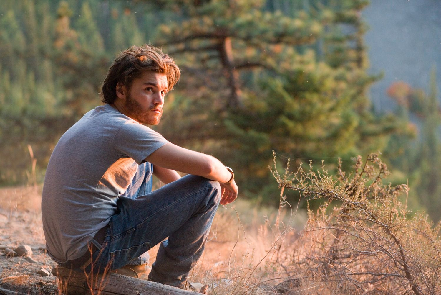 into the wild movie review essay