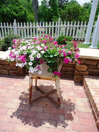 A View From My Garden   Georgia Gardening. Wash Tub Planter