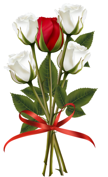 White And Red Rose Bouquet Transparent Png Clip Art Image Red Rose Bouquet Rose Flower Wallpaper Red And White Roses