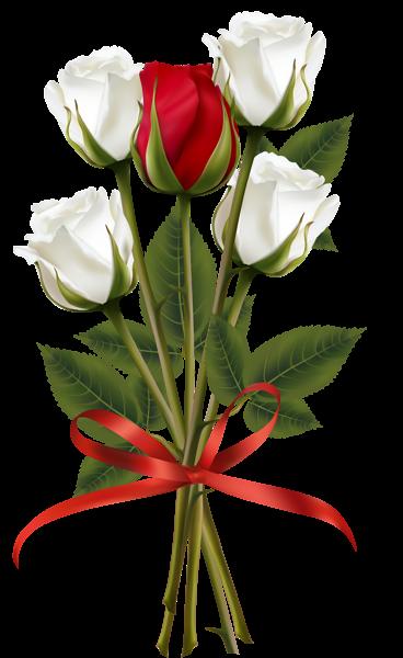 Christine Staniforth ♛༻ | Fleurs, tube, flowers, png ...