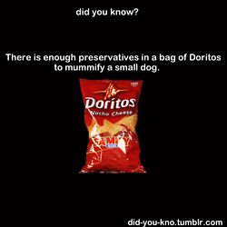 and there went my love for doritos.  ew.